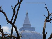 Sri  Lanka 1 Day to Anuradhapura Tour